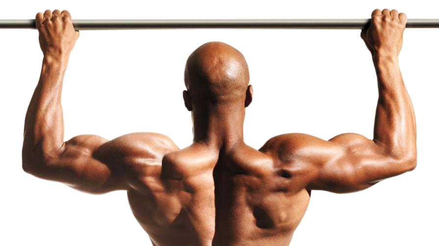 Click for the world's #1 pullup program